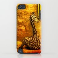 Giraffes iPod touch Slim Case