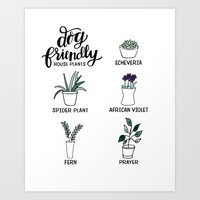 Dog Friendly House Plant… Art Print