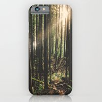 iPhone & iPod Case featuring Sun in the Rainforest by Melanie McKay