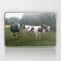 German Cows Laptop & iPad Skin