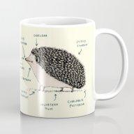 Anatomy Of A Hedgehog Mug