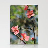 Spring Softness Stationery Cards