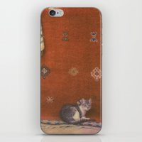 Cat on a Rug iPhone & iPod Skin