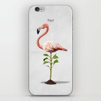 Planted iPhone & iPod Skin
