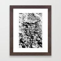 Dinosaur Skin (BW) Framed Art Print