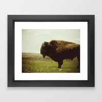 Stock-Still Framed Art Print