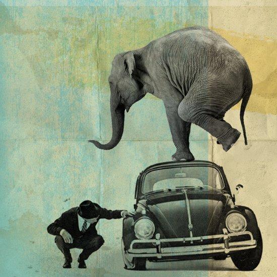 Looking for Tiny, Elephant on a VW beetle Art Print