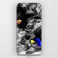 Nemo And Dora iPhone & iPod Skin