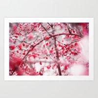 Winter Berries Art Print