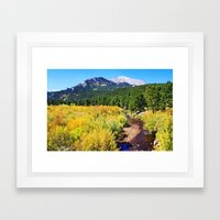 Fall Creek Framed Art Print