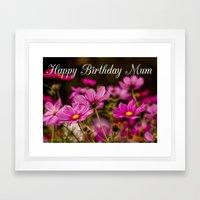 Cosmos Bipinnatus - Birthday Card version Framed Art Print