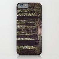 Redwood Forest iPhone 6 Slim Case
