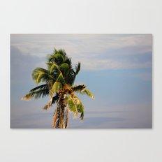 Palm Free Canvas Print