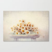 daisies on a stool Canvas Print