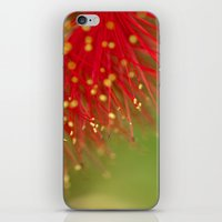 Fireworks of the Callistemon 30-13 iPhone & iPod Skin