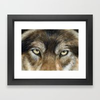 Wolf eyes Framed Art Print