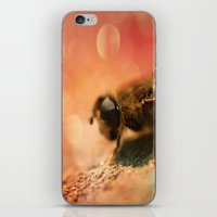 Bokeh Bee iPhone & iPod Skin