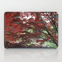 Red Japanese maple tree in Van Dusen Garden, Vancouver, BC, Canada. Floral nature photography. iPad Case
