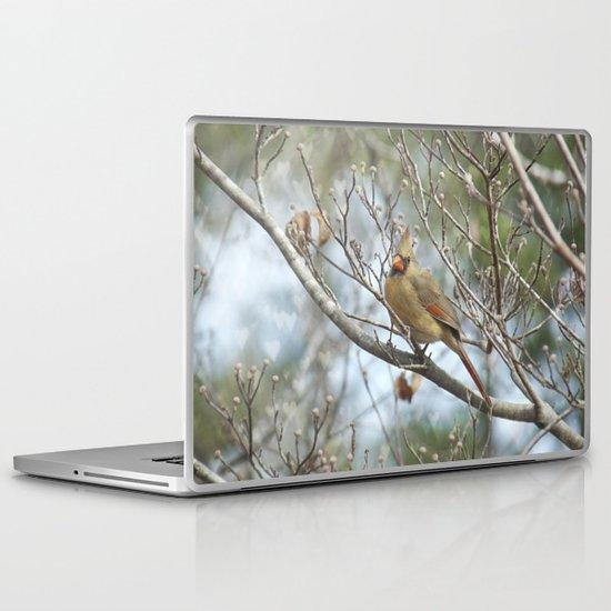 Lady Cardinal Laptop & iPad Skin
