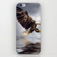 Bald Eagle swooping iPhone & iPod Skin