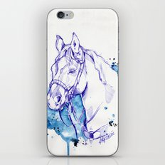 Blue Rodeo iPhone & iPod Skin