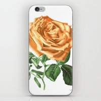 For ever beautiful iPhone & iPod Skin