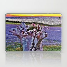 Saturated Driftwood Laptop & iPad Skin