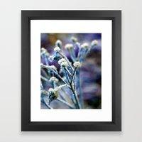 Deep Freeze Framed Art Print