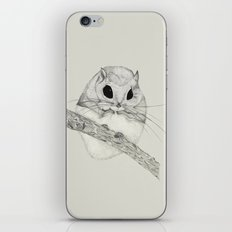 Fuzzball-gray iPhone & iPod Skin