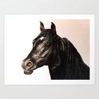 Black Stallion Painting Art Print