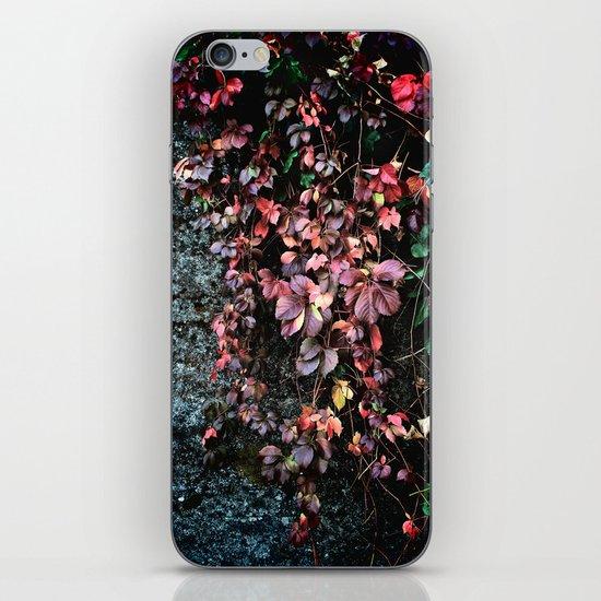 Red Leaf iPhone & iPod Skin