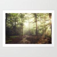 german rain forest Art Print