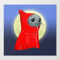 Hooded Seal Canvas Print