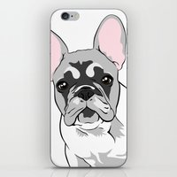 Jersey the French Bulldog iPhone & iPod Skin