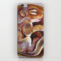 Sciuradae iPhone & iPod Skin