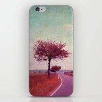 Summer & Sun iPhone & iPod Skin