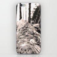 Beachwood iPhone & iPod Skin