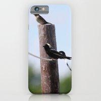 iPhone & iPod Case featuring Bobolinks by Ornithology