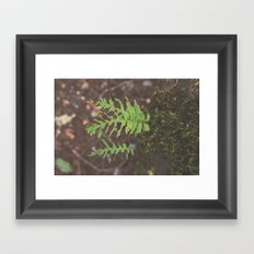 Hungry Hungry Caterpillar Forest Nature Print Framed Art Print
