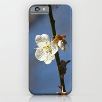 ONLY LOVE iPhone 6 Slim Case