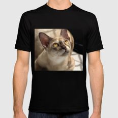 Study of a Cat SMALL Mens Fitted Tee Black