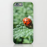 Ladybug on a Leaf iPhone 6 Slim Case