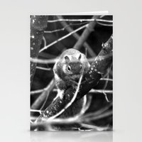 Squirrel in Black and White Stationery Cards