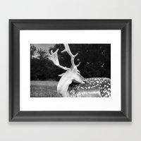 Leave Me Alone... Framed Art Print