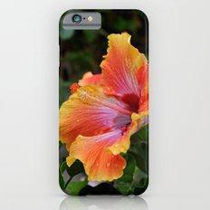 Pink Grapefruit iPhone 6s Slim Case