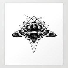 Geometric Moth Art Print