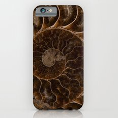 Brown Ammonite iPhone 6 Slim Case