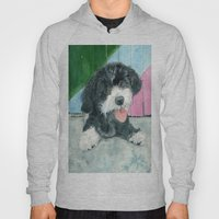 Sammy the Parti-poodle Pup Hoody