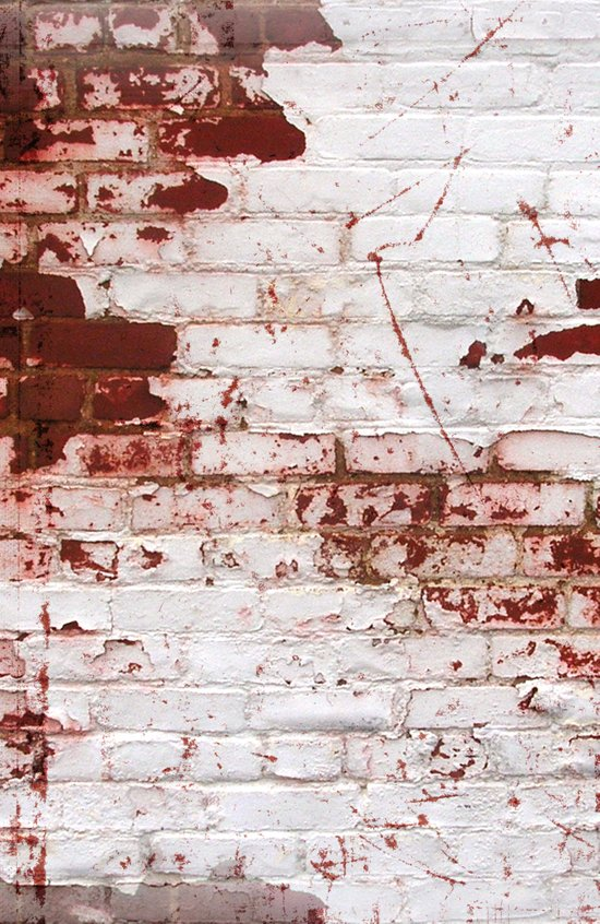 Blood Wall  Art Print