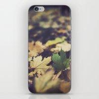 fall duet iPhone & iPod Skin